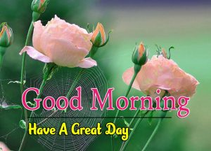 Hd Good Morning Images Download 5
