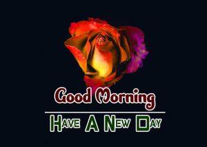 Hd Good Morning Images Wallpaper 5