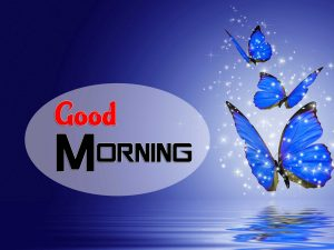 Hd Good Morning Photo Wallpaper