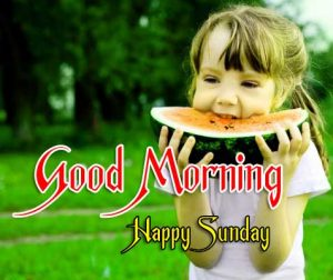 Hd Good Morning Pictures Download