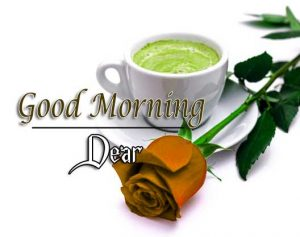 Hd Good Morning Pictures Images 1