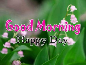 Hd Good Morning Pictures Pics