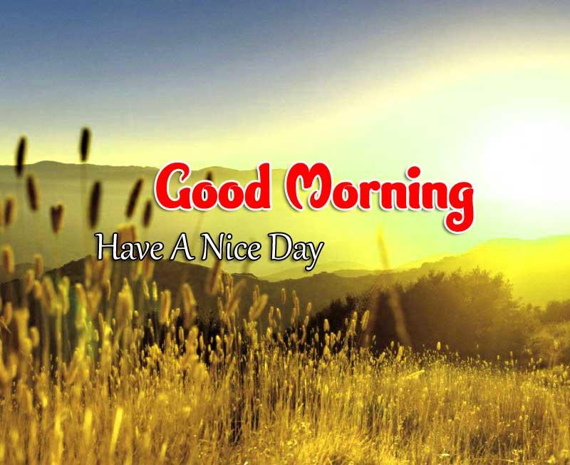 Hd Good Morning Wallpaper Images 2