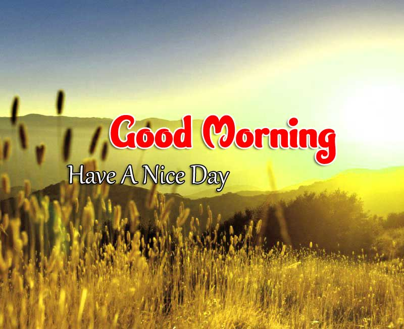 Hd Good Morning Wallpaper Images 3