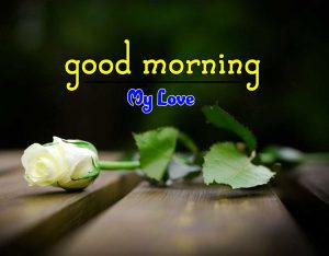 Hd Good Morning Wallpaper Images 4