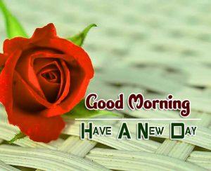 Hd Good Morning Wallpaper Images 5