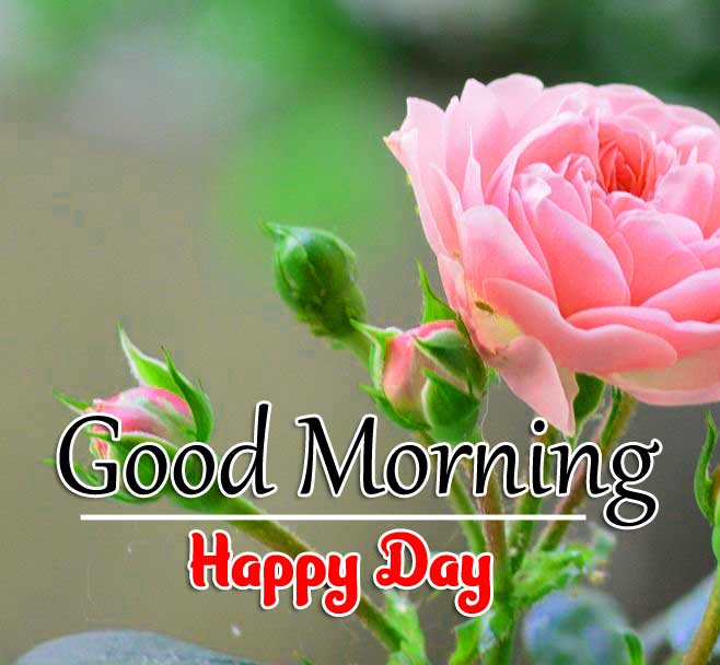 Latest Good Morning Download FRee 1