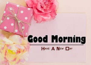 Latest Good Morning Download Wallpaper