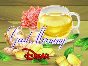 Latest Good Morning Images Download 12