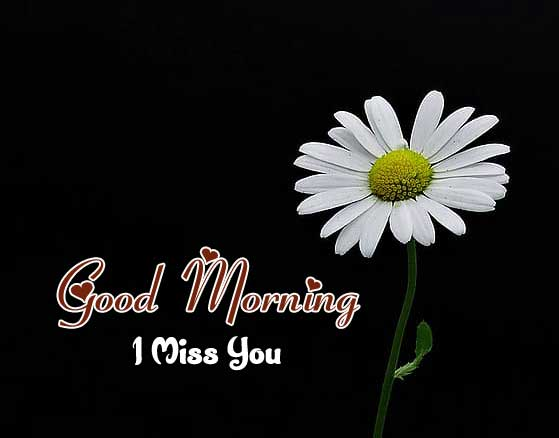 Latest Good Morning Images Download 6