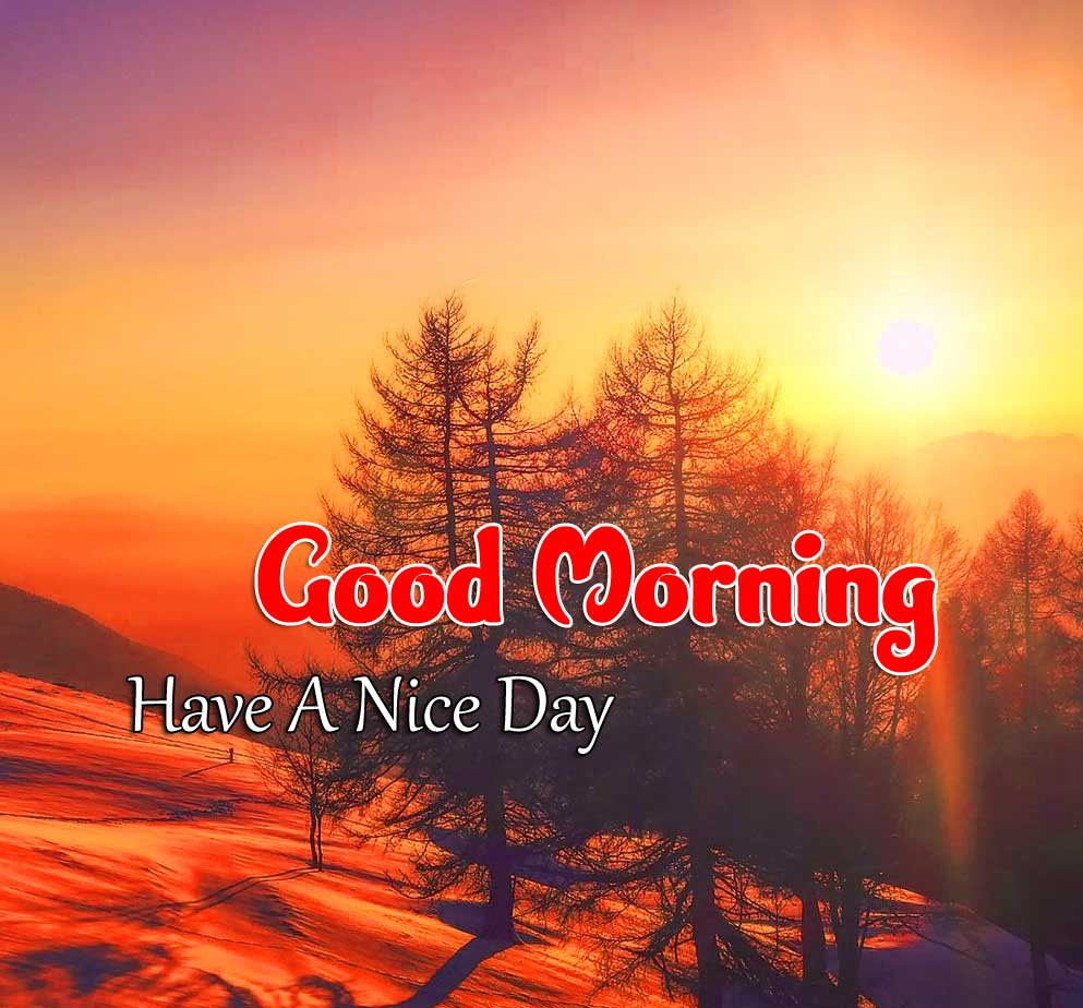 Latest Good Morning Images Hd 7