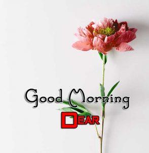 Latest Good Morning Images Photo 10