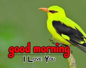 Latest Good Morning Images Wallpaper 9