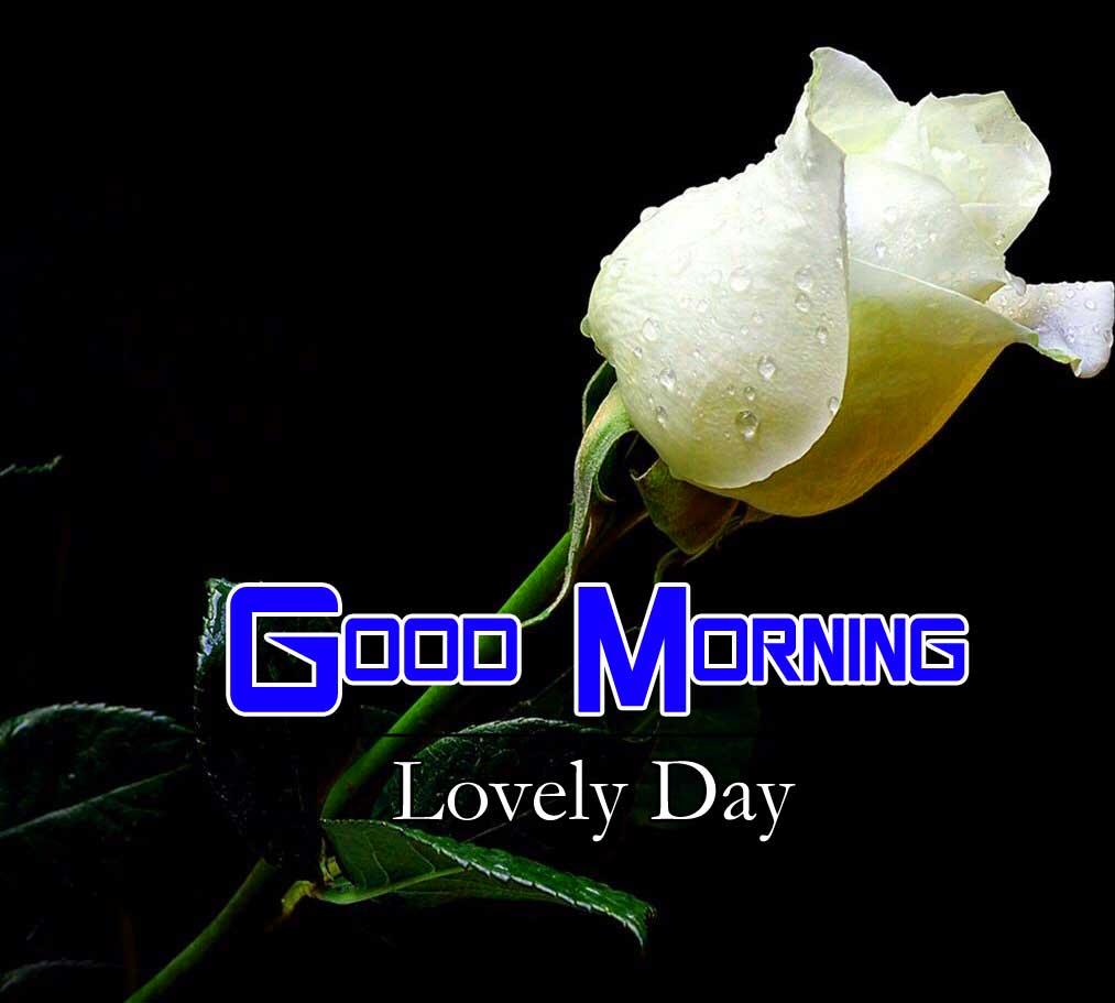 Latest Good Morning Photo Hd 4