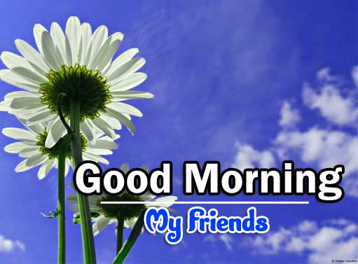 Latest Good Morning Photo Pics 6