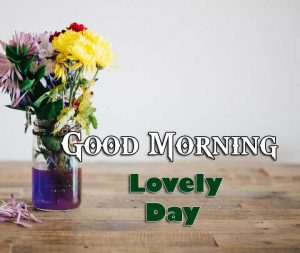 Latest Good Morning Photo Wallpaper 6