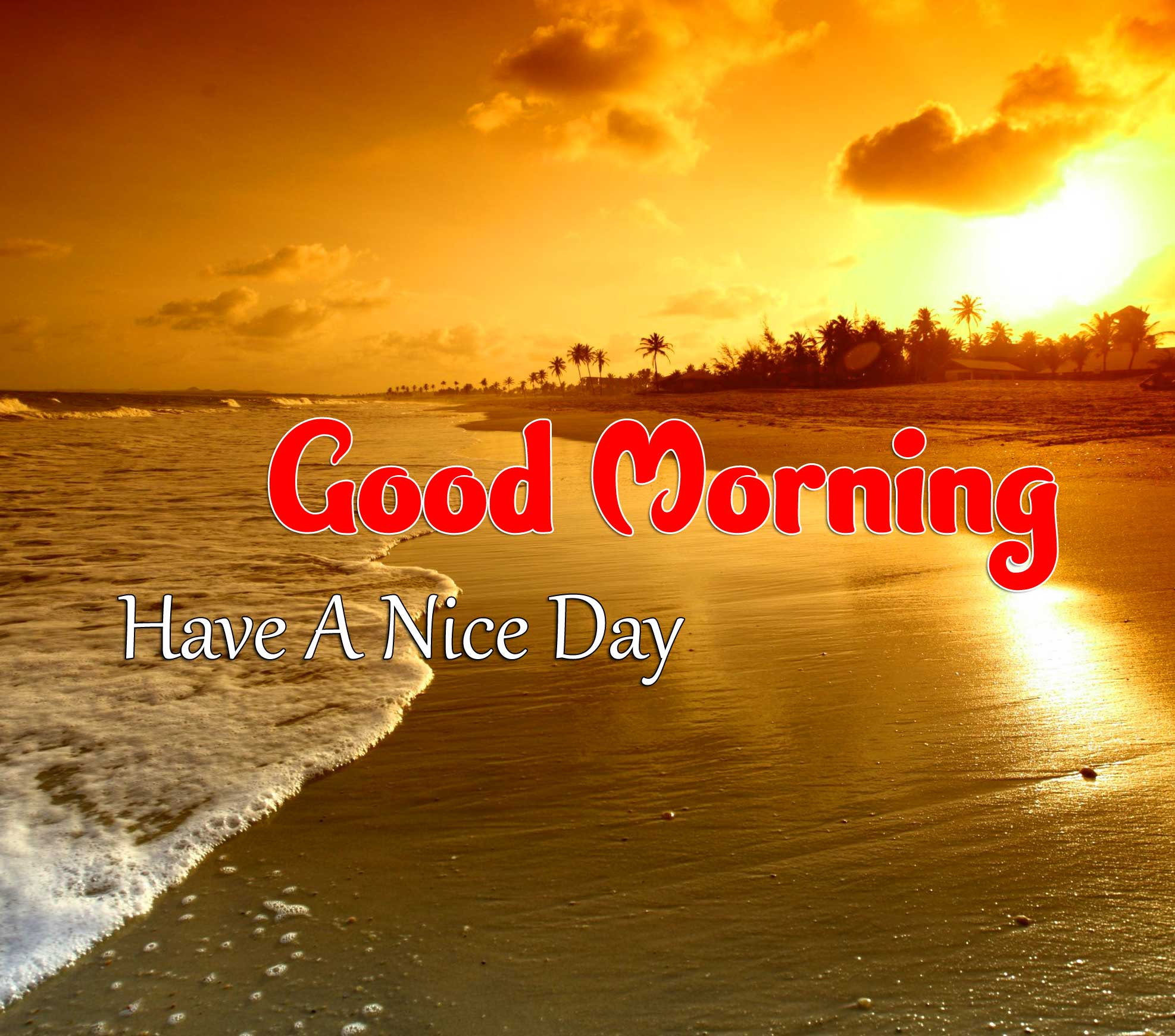 Latest Good Morning Pics Images 6