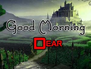 Latest Good Morning Wallpaper Images 8