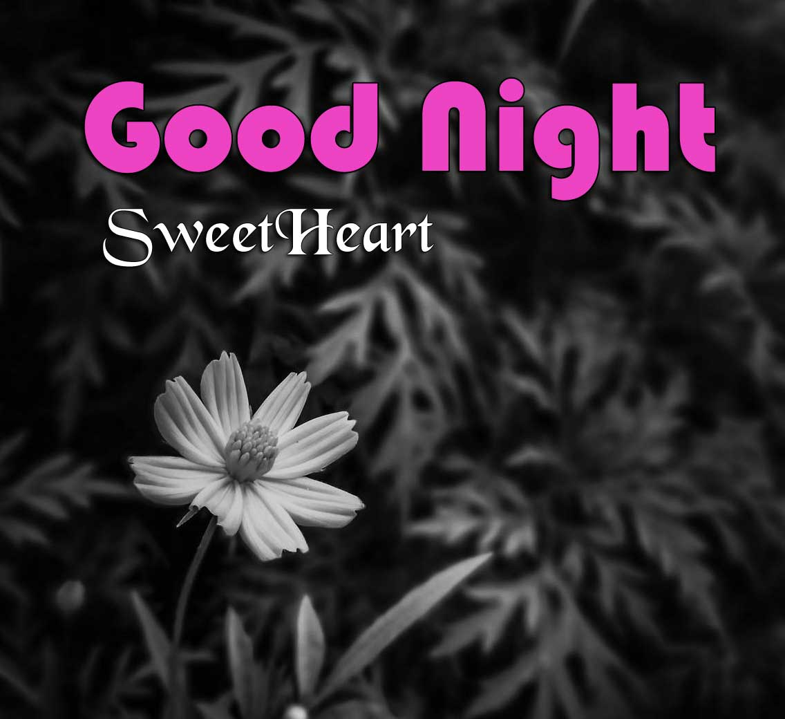 Latest Good Night Photo Download