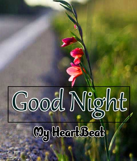 Latest Good Night Wallpaper Photo