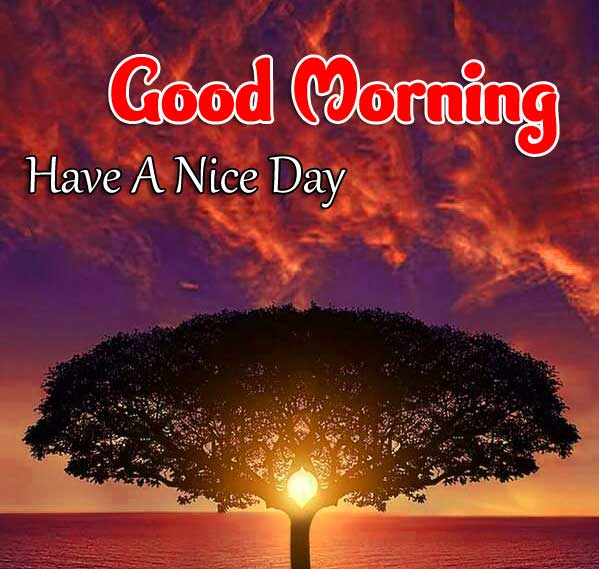 New Good Morning Download Free Images
