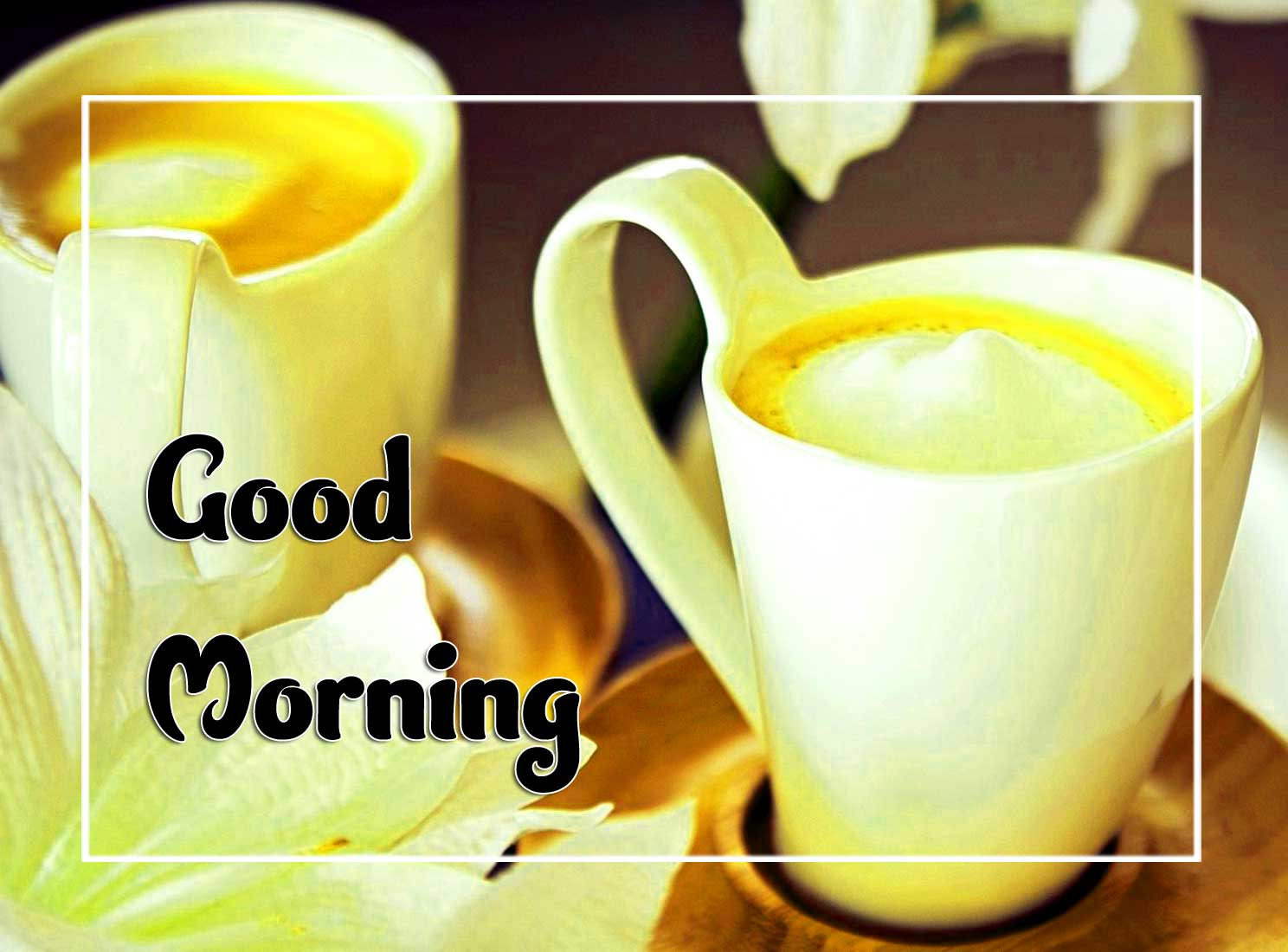New Good Morning Download Images 2
