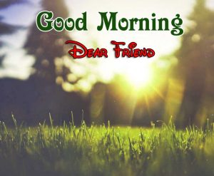 New Good Morning Images 10