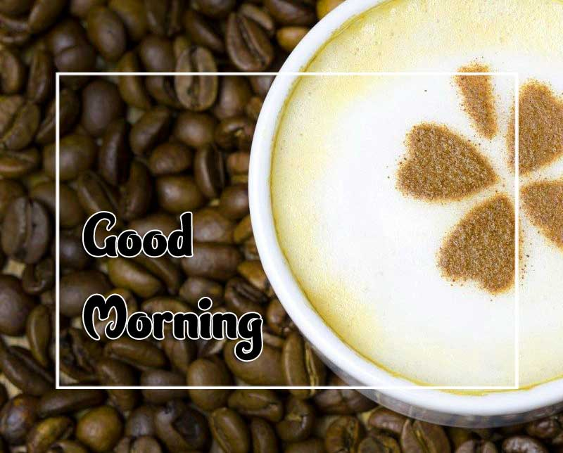 New Good Morning Images Photo 3