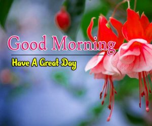 New Good Morning Images Pics Free