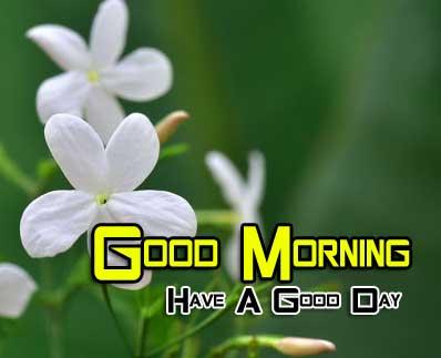 New Good Morning Images Wallpaper 2