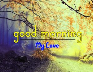 New Good Morning Images Wallpaper 7