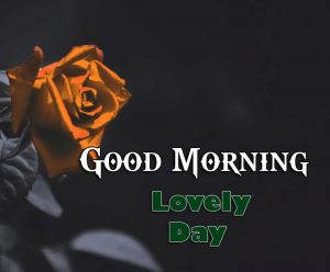New Good Morning Images Wallpaper 9