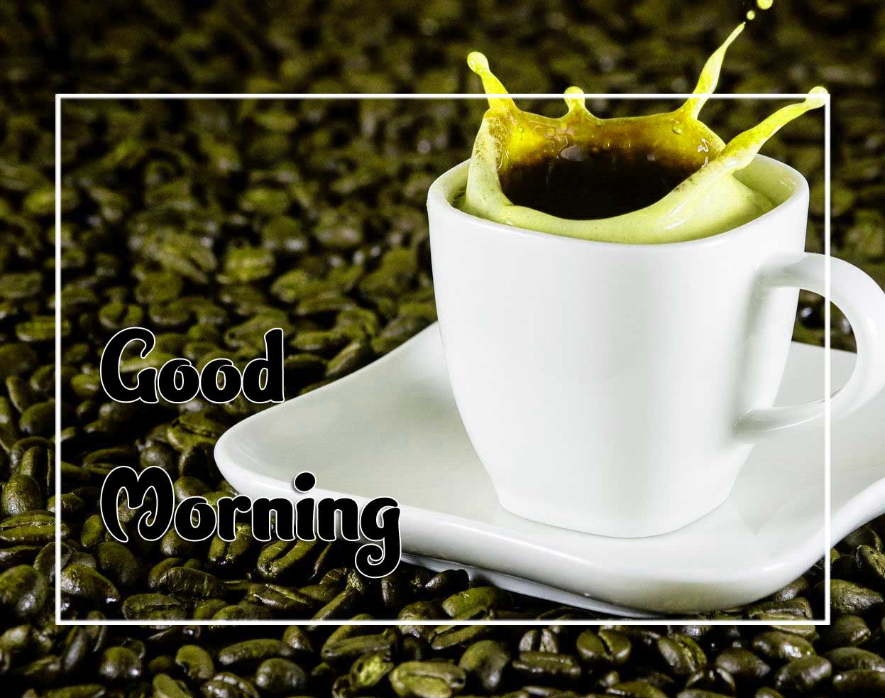 New Good Morning Images photo Hd 1