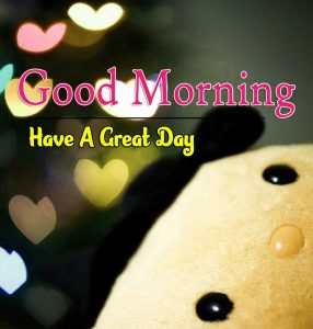 New Good Morning Photo Pictures 1