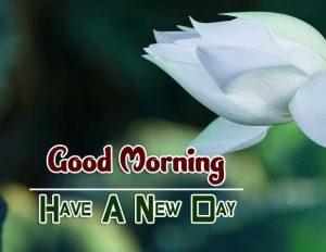 New Good Morning Pics Download 2