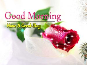 New Good Morning Pics Images 5