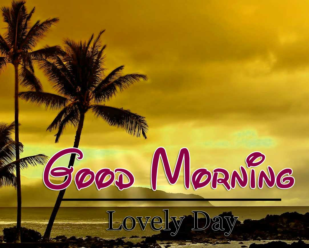 New Good Morning Pictures Images 5