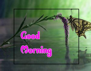 New Good Morning Pictures Photo 1