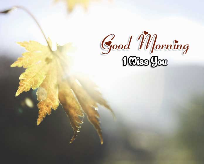 New Good Morning Wallpaper Images 4