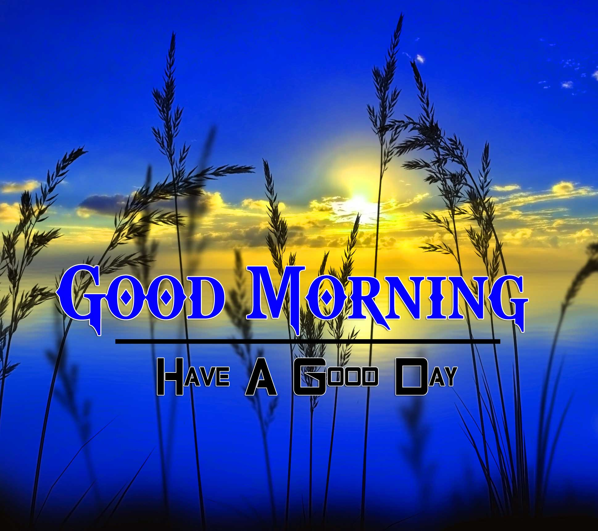 New Good Morning Wallpaper Images 5