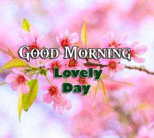 Nice Good Morning Images Download 5