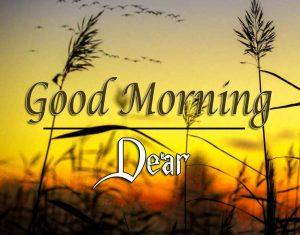 Nice Good Morning Images Pics 5