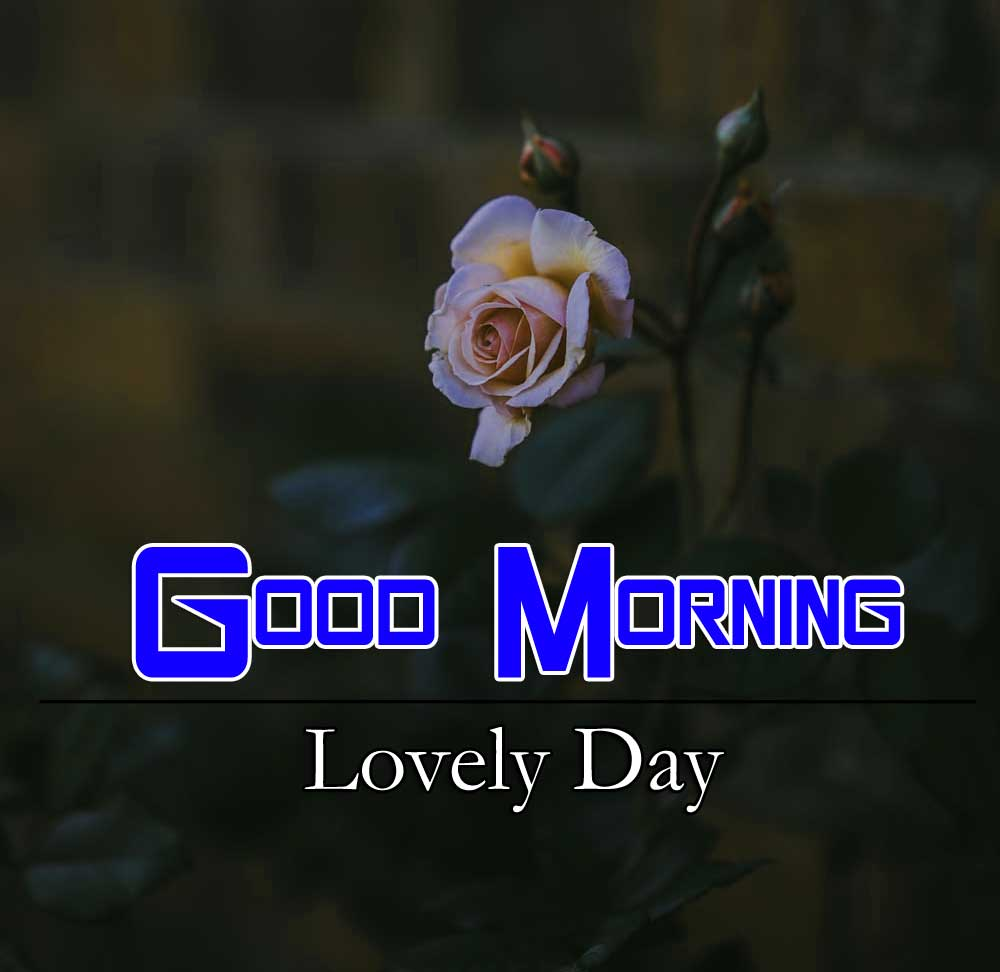 Nice Good Morning Images Wallpaper 1