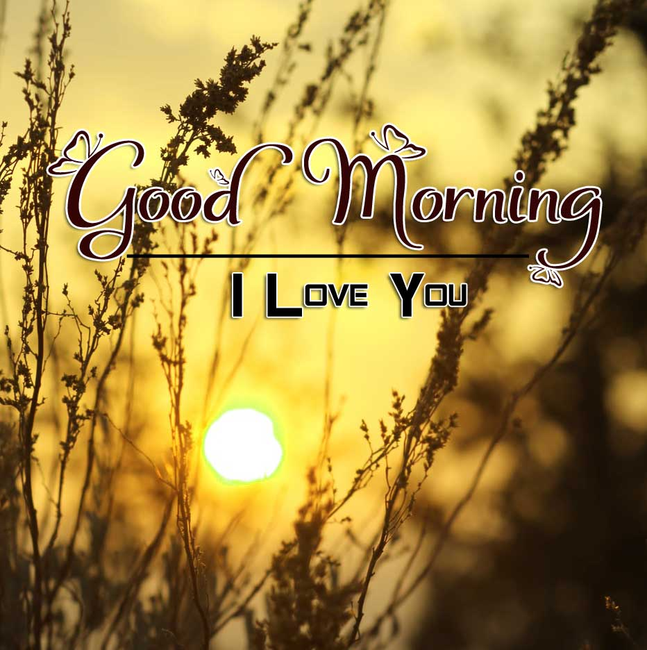 Nice Good Morning Imgaes Hd Free