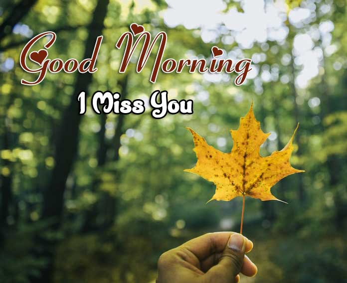 Nice Good Morning Photo Hd