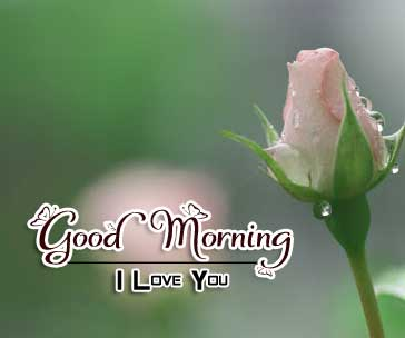 Nice Good Morning Pics