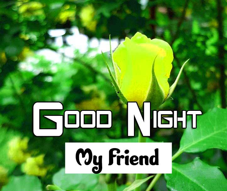 Nice Good Night Images Hd