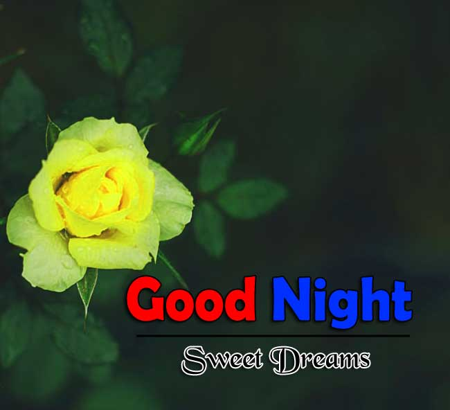 Nice Good Night Photo Images 1