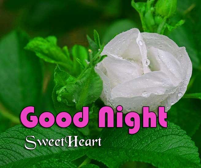 Nice Good Night Photo Wallpaper