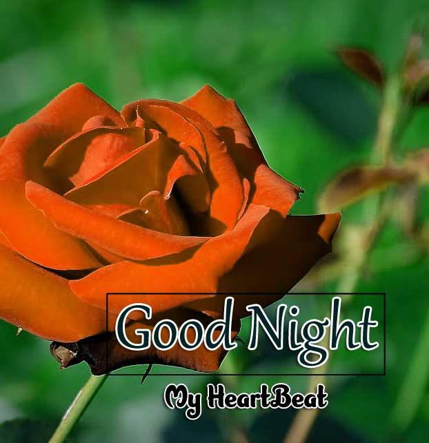 Nice Good Night Pics download